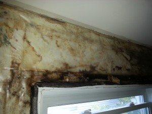 Hidden Wall Mold - Mold Testing Ottawa