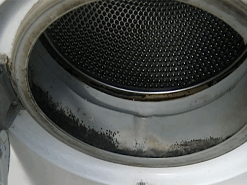 black mold washing machine