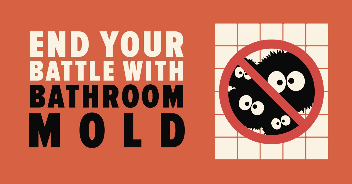 End Your Battle with Bathroom Mold