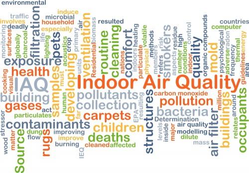 En savoir plus sur la qualité de l'air intérieur - Mold Busters