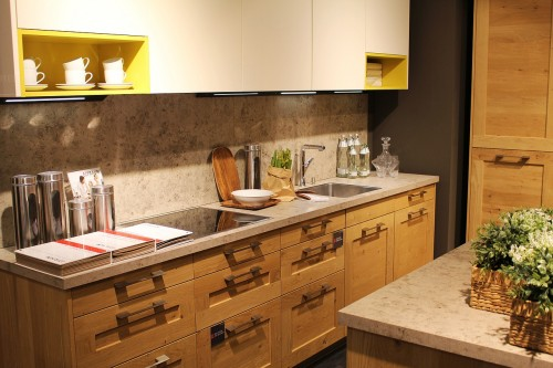 Kitchen mold: Common causes and remedies