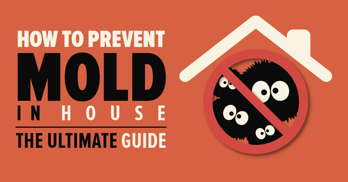 Learn how to prevent mold in your home