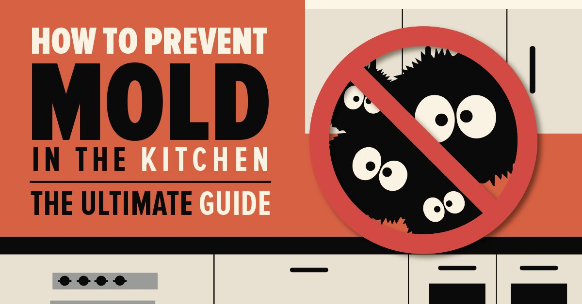 Prevent kitchen mold with our useful tips