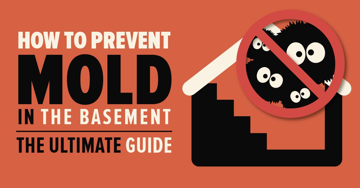 Prevent Basement Mold - The Ultimate Guide