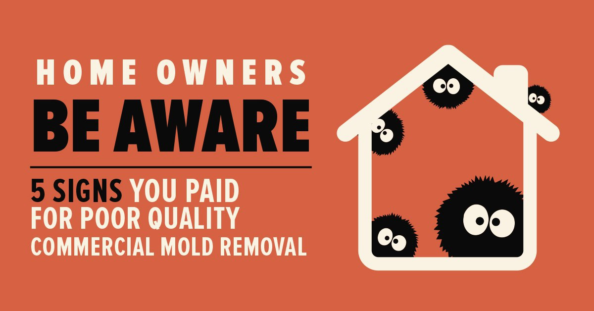 Home Owners Beware Of What You Get With Free Mold Inspection