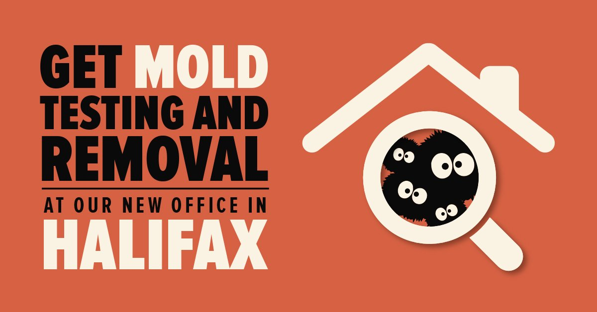 Get Mold Removal at Our New Office in Halifax!