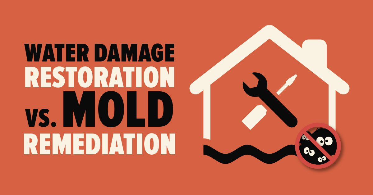 Ottawa & Gatineau Flooding: Water Damage Restoration vs. Mold Remediation