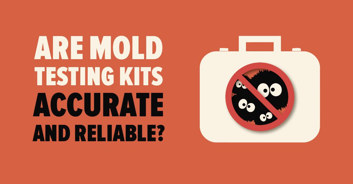 Home Made Mold Testing Kits vs Professional Kit