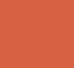 ch1-la-moisissure-et-son-développement-bustmold-icon-1