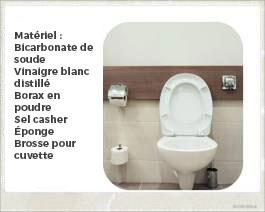 Des moyens naturels pour nettoyer votre toilette - Busters Mold