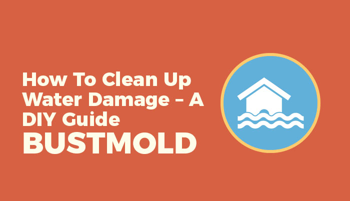 How To Clean Up Water Damage – A DIY Guide