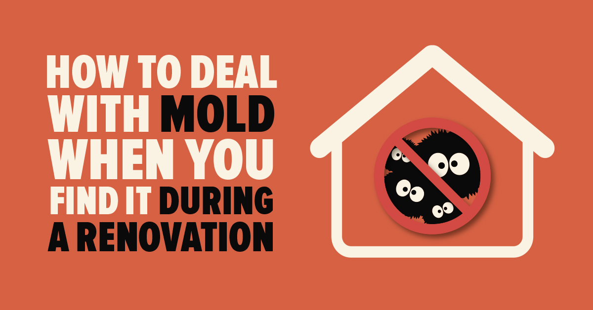 How to Deal With Mold When You Find it During a Renovation