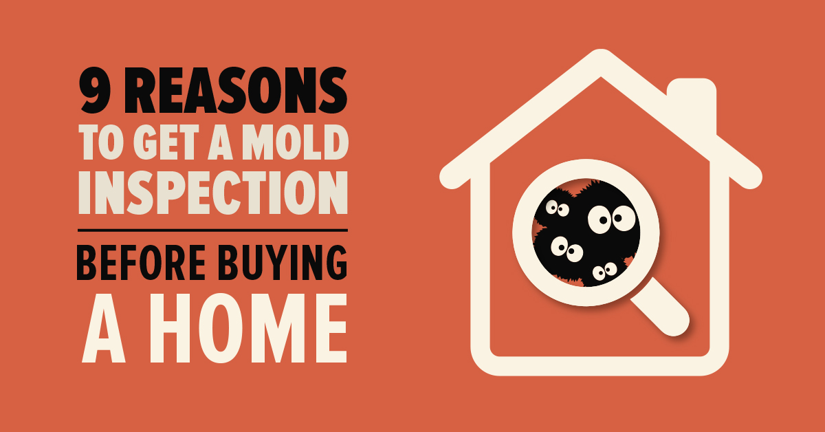 9 Reasons to Get a Mold Inspection Before Buying a Home