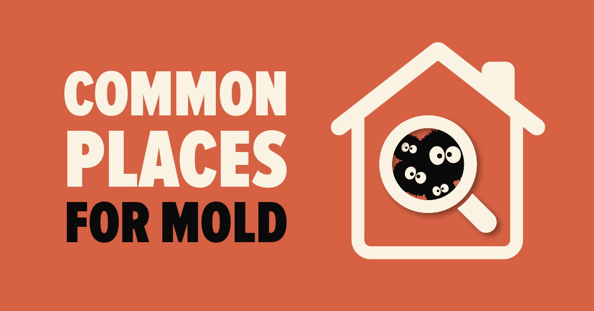 Common Places for Mold