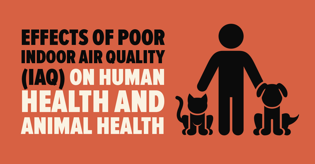 Effects of poor Indoor Air Quality (IAQ) on human health and animal health