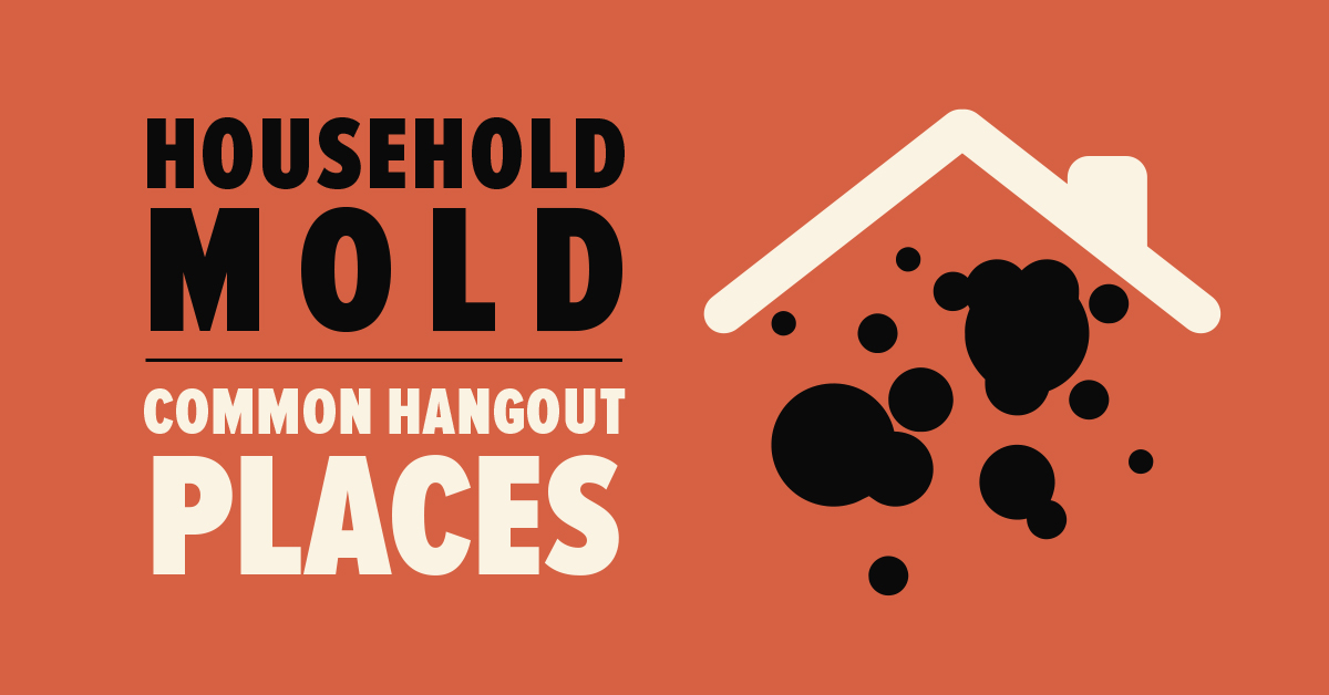 Essay: Common Hangout Places for Household Mold