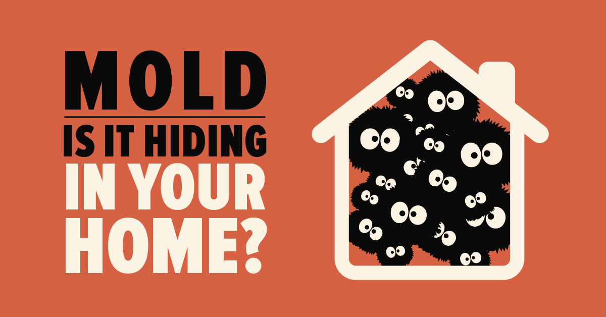 Mold: Is It Hiding in Your Home?