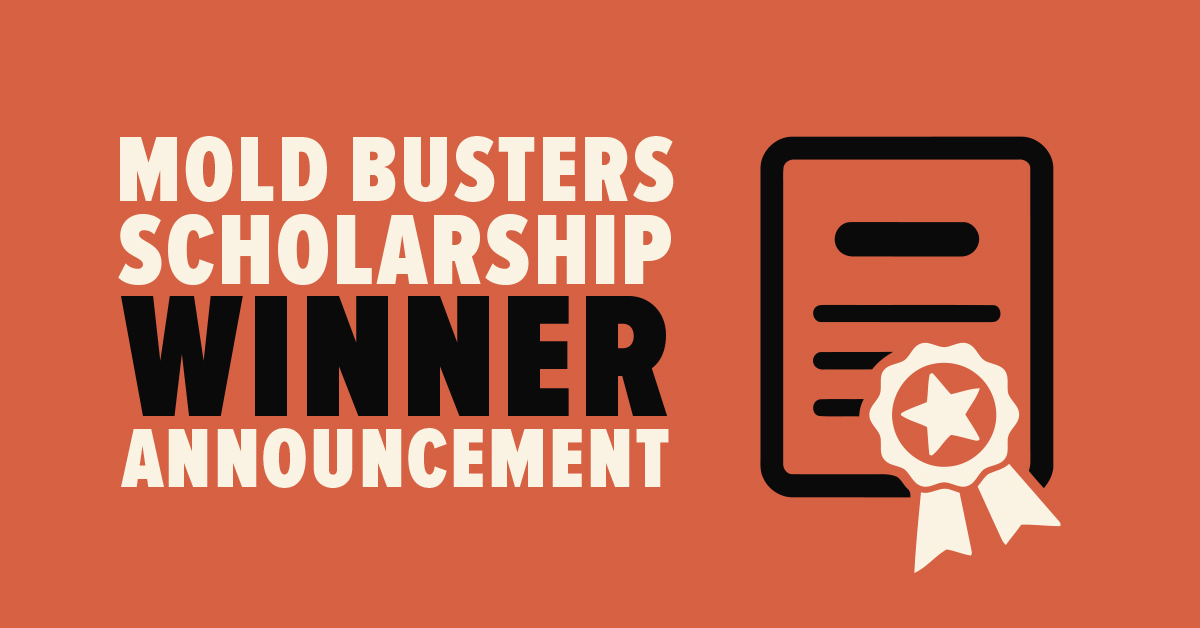 Mold Busters Scholarship Winner Announcement Summer Semester 2017/2018