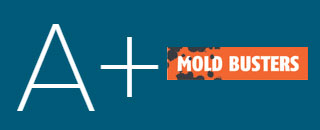 BBB A+for Mold-Busters