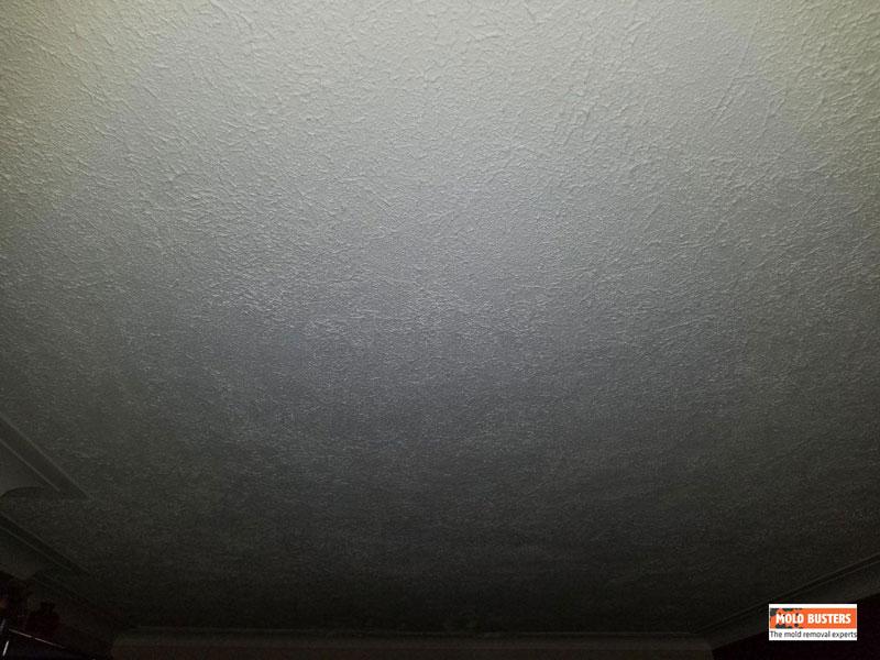 asbestos popcorn ceiling 03