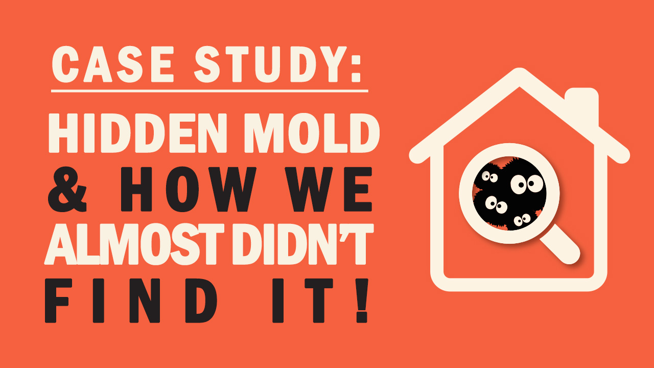 Hidden Mold – How We Almost Didn't Find It!