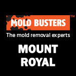 Mold Busters Mount Royal