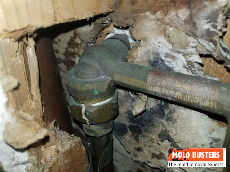 green mold on pipes