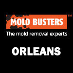 Mold Busters Orleans