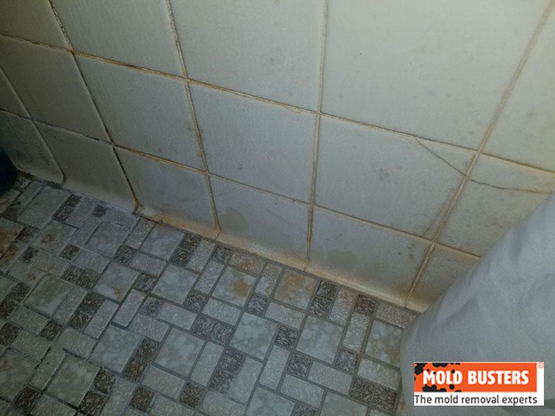 orange mold in bathroom