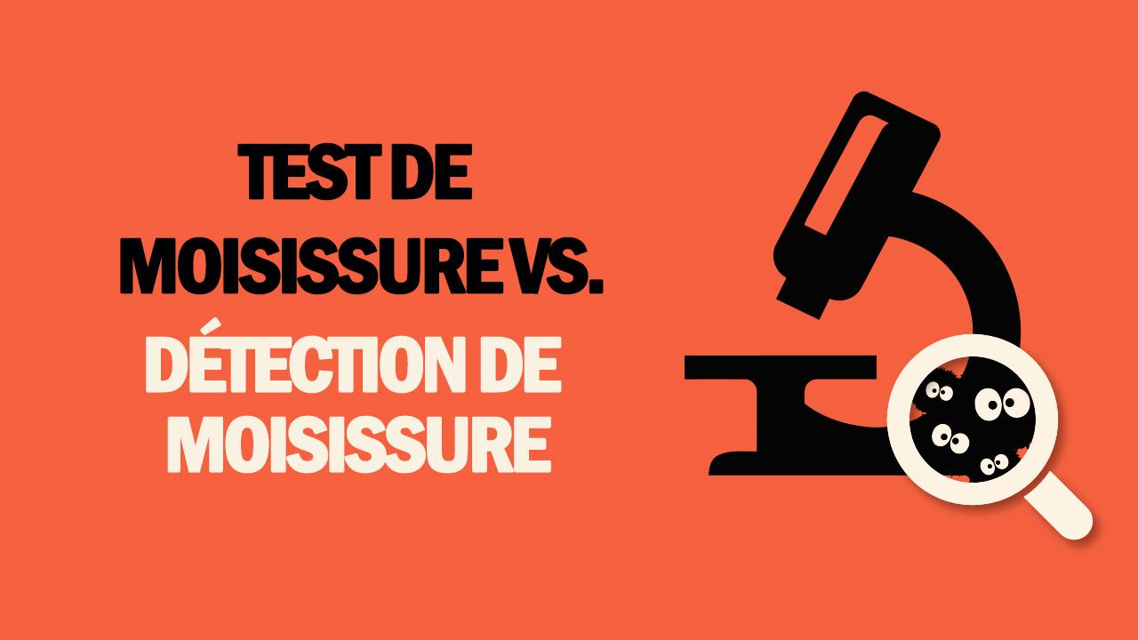 test de moisissure vs detection