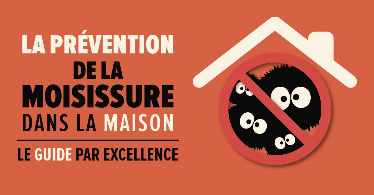la prévention de la moisissure dans la maison