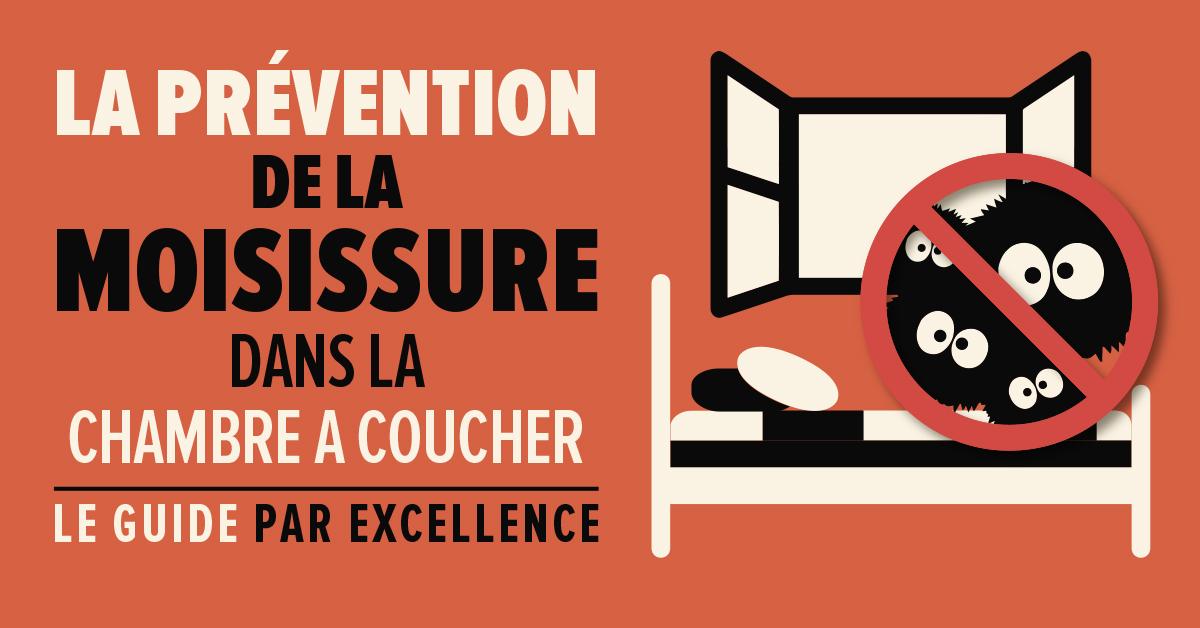 La prévention de la moisissure dans la chambre à coucher