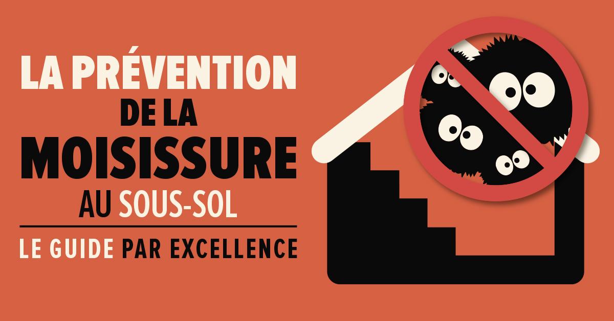 FR6 la prévention de la moisissure au sous sol bustmold