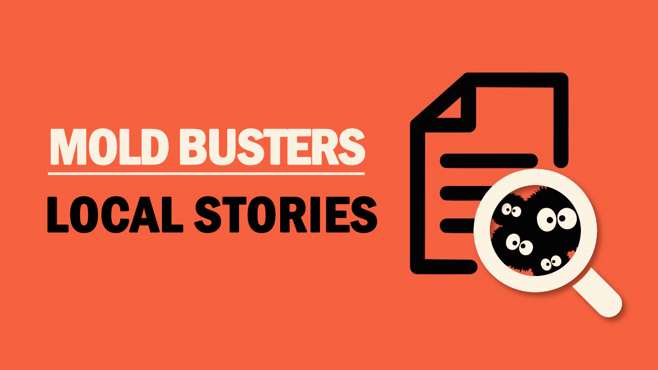 Mold Busters – Local Stories