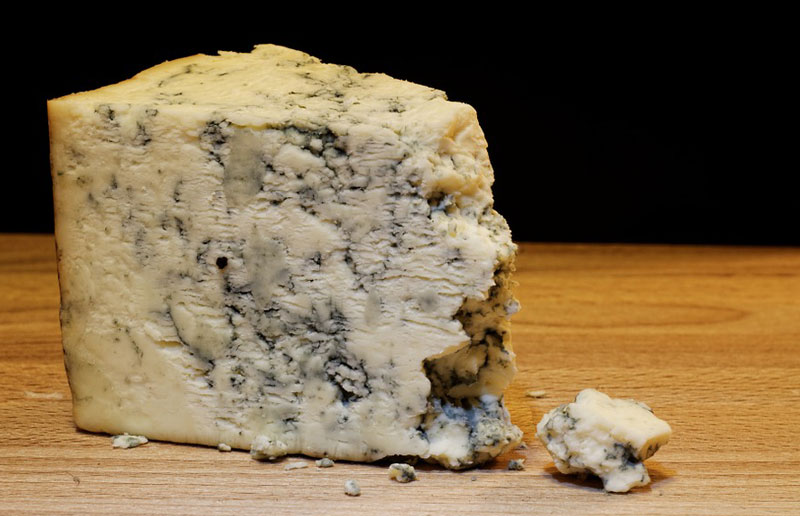 cheese made with mold