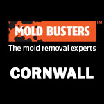 Mold Busters Cornwall