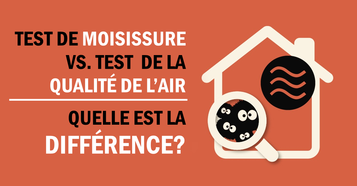Test de moisissure vs. test de la qualité de l'air