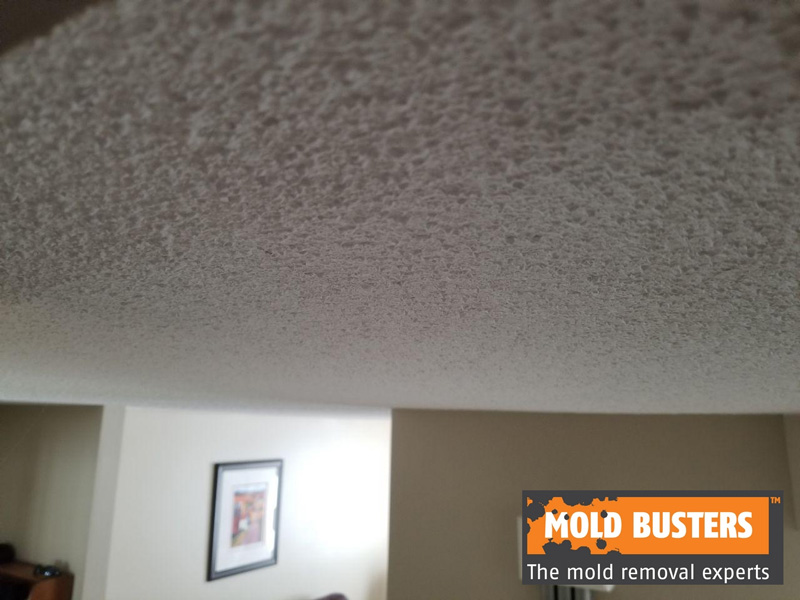 Asbestos in Popcorn Ceilings - How to Identify & Remove? | Mold Busters