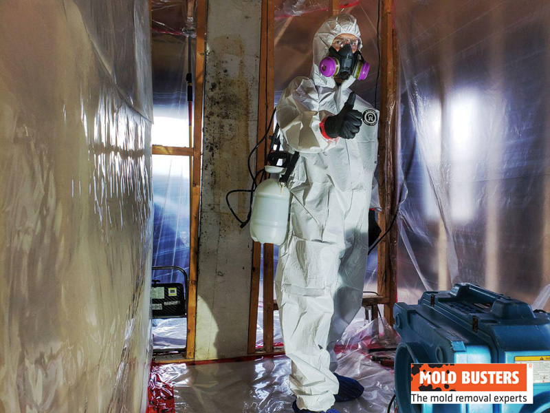 Containment and safe mold removal