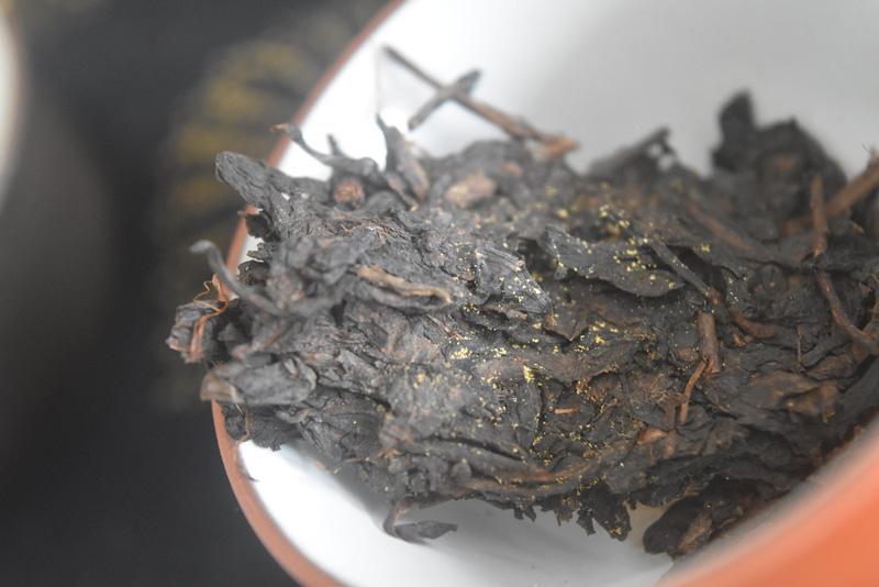 eurotium cristatum