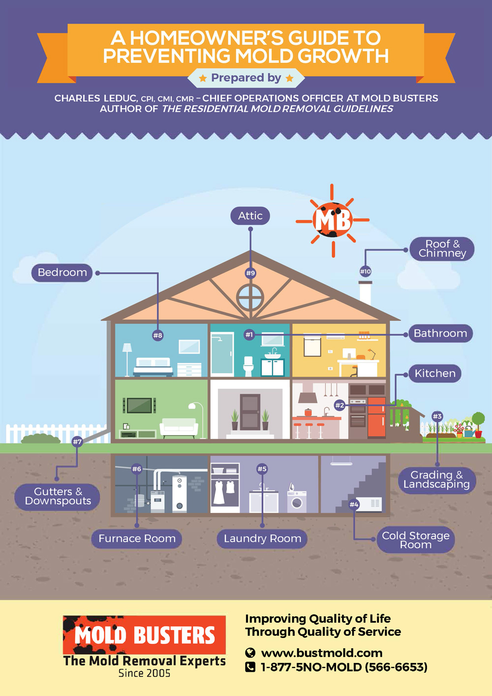 homeowners guide to preventing mold growth