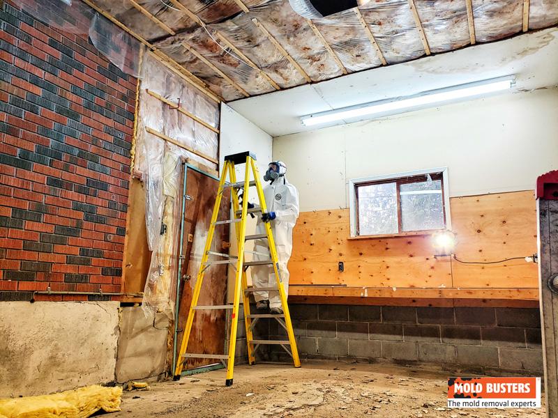 Mold Remediation Garage Prep