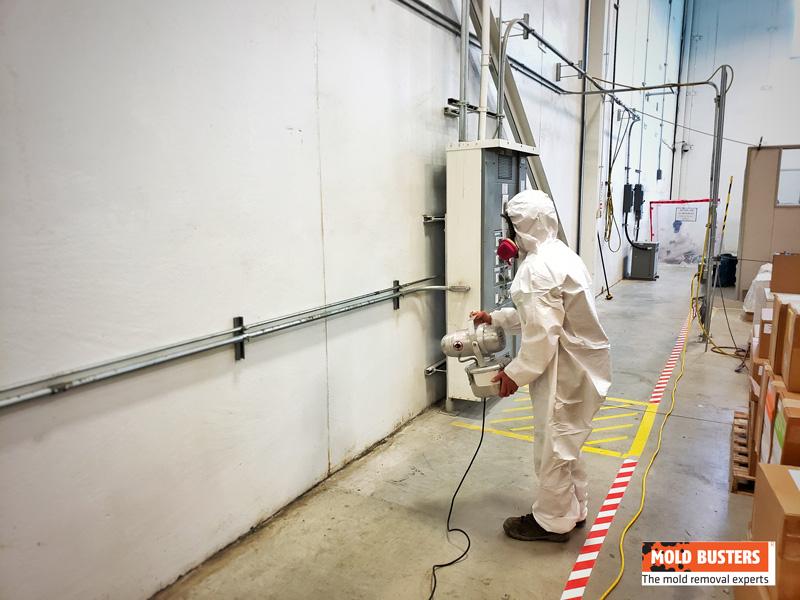 Remediation Technician Fogging with a Fungicide